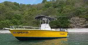 we sell all papagayo fishing charters at captain direct rates