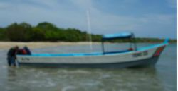 if you searching sport fishing in tamarindo costa rica you are on the right site