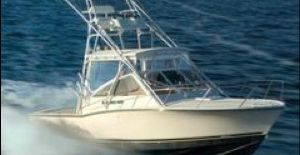 costa rica fishing playa grande? book here