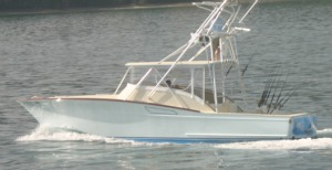 best costa rica fishing charters los suenos with villa thoga tours