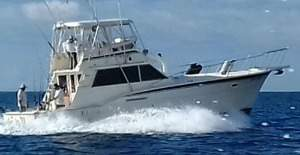 you get the best rates for costa rica fishing quepos tours