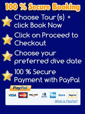 pay your agua rica diving center tamarindo trip 100 % secure