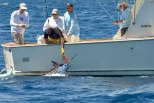 playa grande costa rica fishing trips