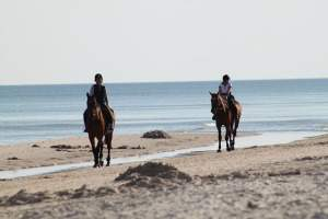 vacation packages in tamarindo costa rica with horseback riding